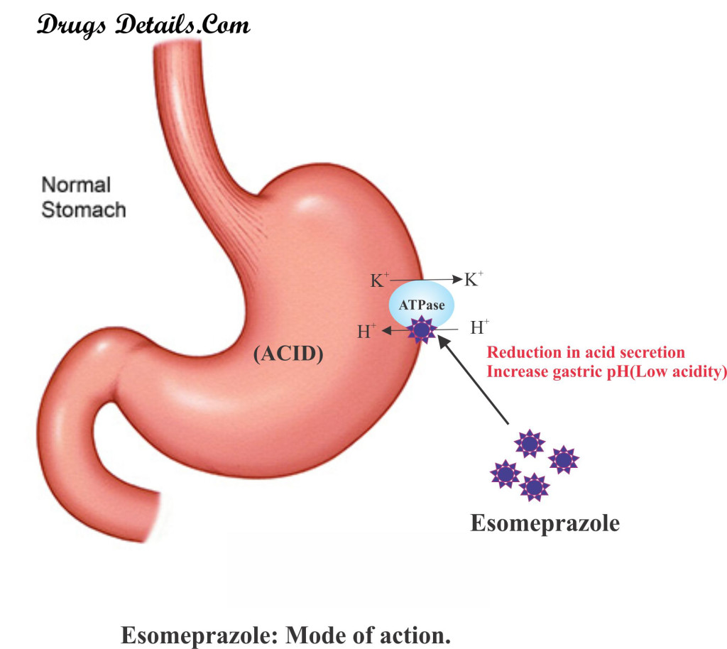 Esomeprazol : Mode of action.
