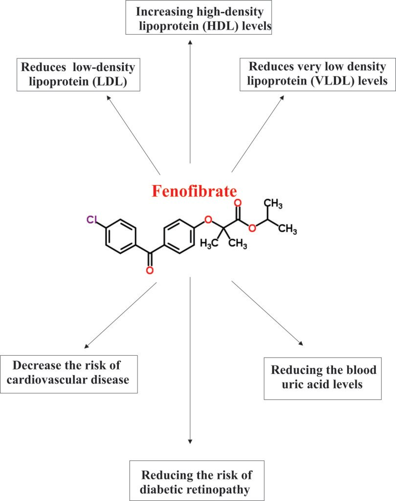 Therapeutic effects of Fenofibrate.