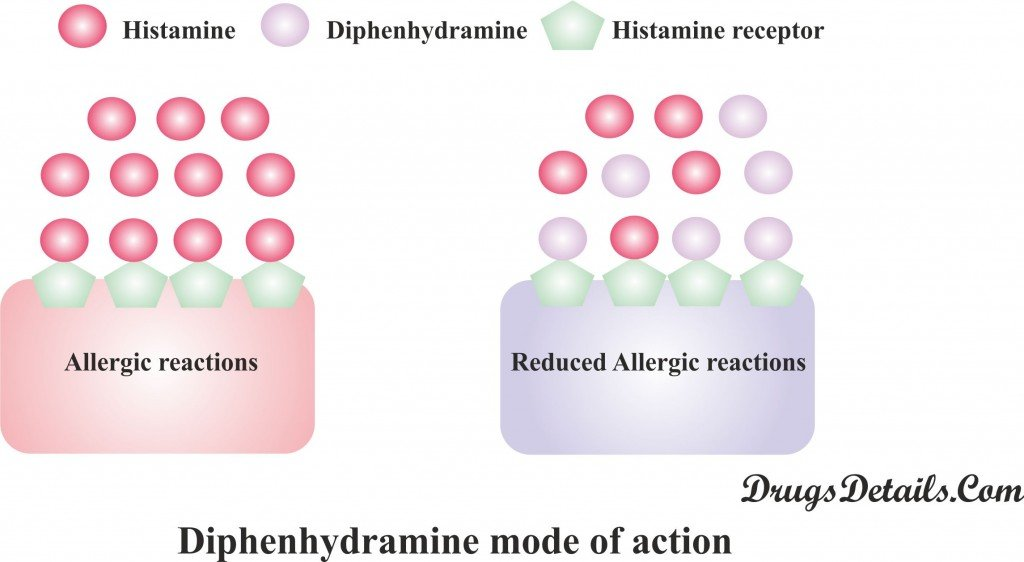 Diphenhydramine : Mode of action.