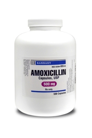 amoxicillin 500mg capsule ingredients