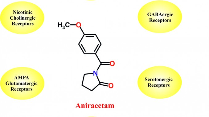 Aniracetam : Mode of action