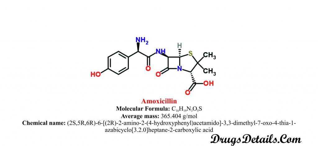 Amoxicillin : Diseases interaction