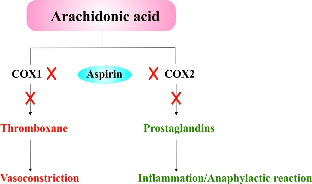 Aspirin: Mode of action.