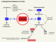 Lisinopril mechanism of action