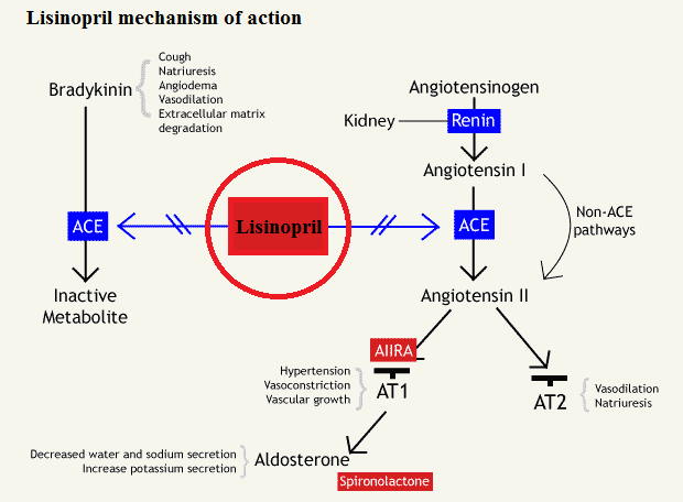Lisinopril mechanism of action