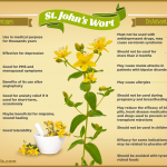 what is st john's wort? Benefits and Side effects