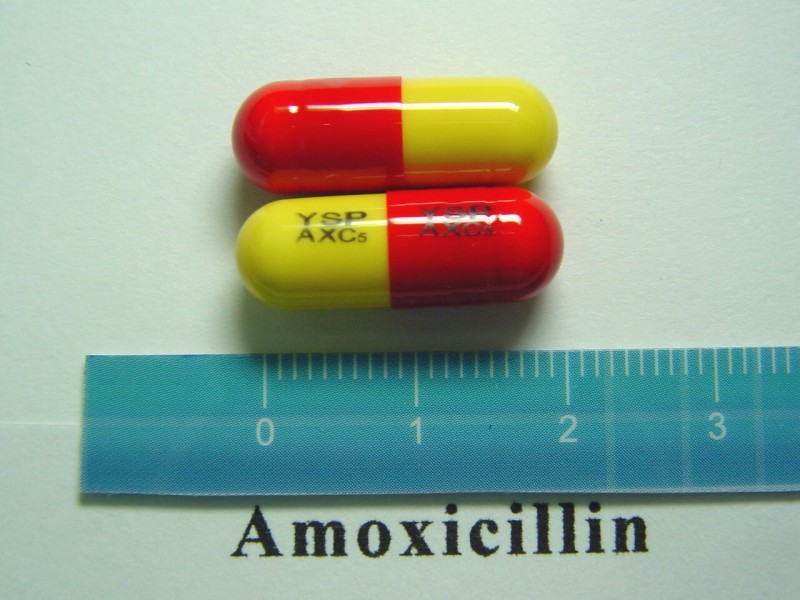 how does amoxicillin look like