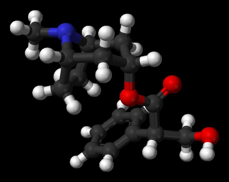 Hyoscyamine molecular weight