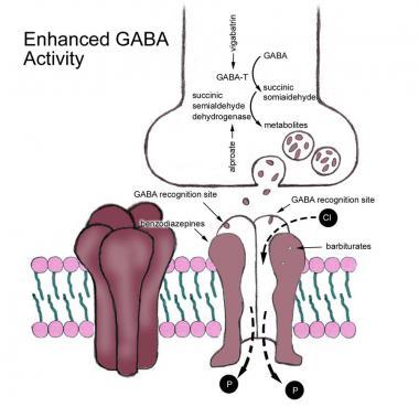 phenobarbital mechanism of action gaba