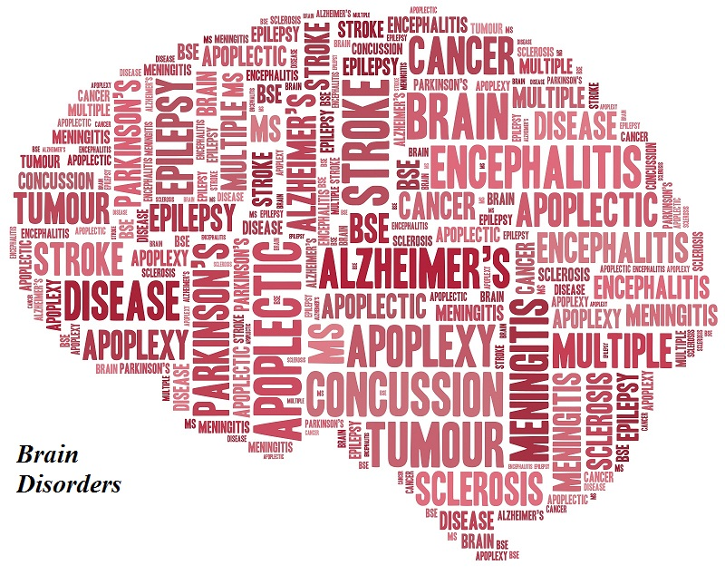 What is a brain disease?