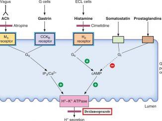 Dexlansoprazole - Generic, Dosage, Uses, omeprazoleVS