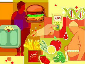Faulty brain signal causes obesity due to overeating of high-fat diets