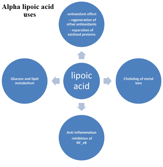 What is alpha lipoic acid derived from?