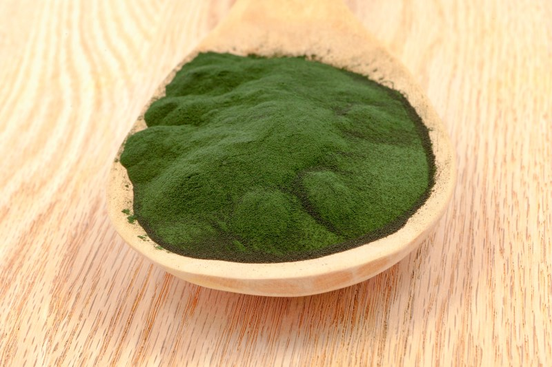 how to use organic spirulina powder