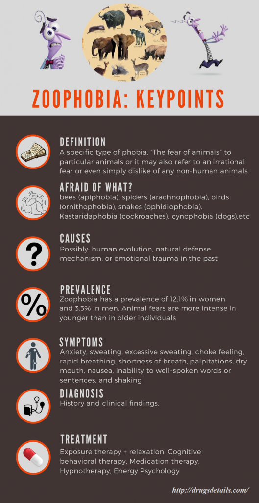 Zoophobia - definition, causes, symptoms, diagnosis, treatments