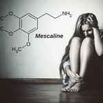 Mescaline and Peyote: Definition, uses, effects, dosage, addiction, drug test
