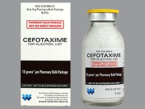 Claforan (cefotaxime) dosing, indications, interactions, adverse effects