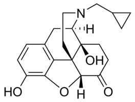 naltrexone structure activity relationship of drugs