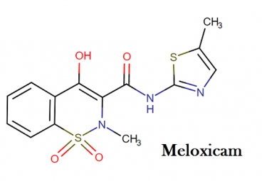 Molecular structure of meloxicam