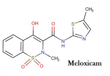 Molecular structure of meloxicam
