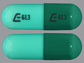 E613 E613 Pill Images (Green / Capsule-shape)
