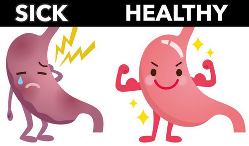 A healthy gut is important to keep the diseases away image photo picture