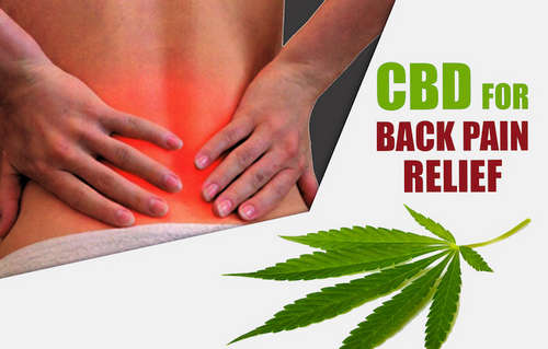 CBD gummies are helpful in the management of chronic pain image photo picture